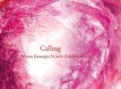 「Calling」かわぐちもも個展2017